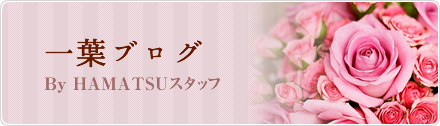 一葉ブログ