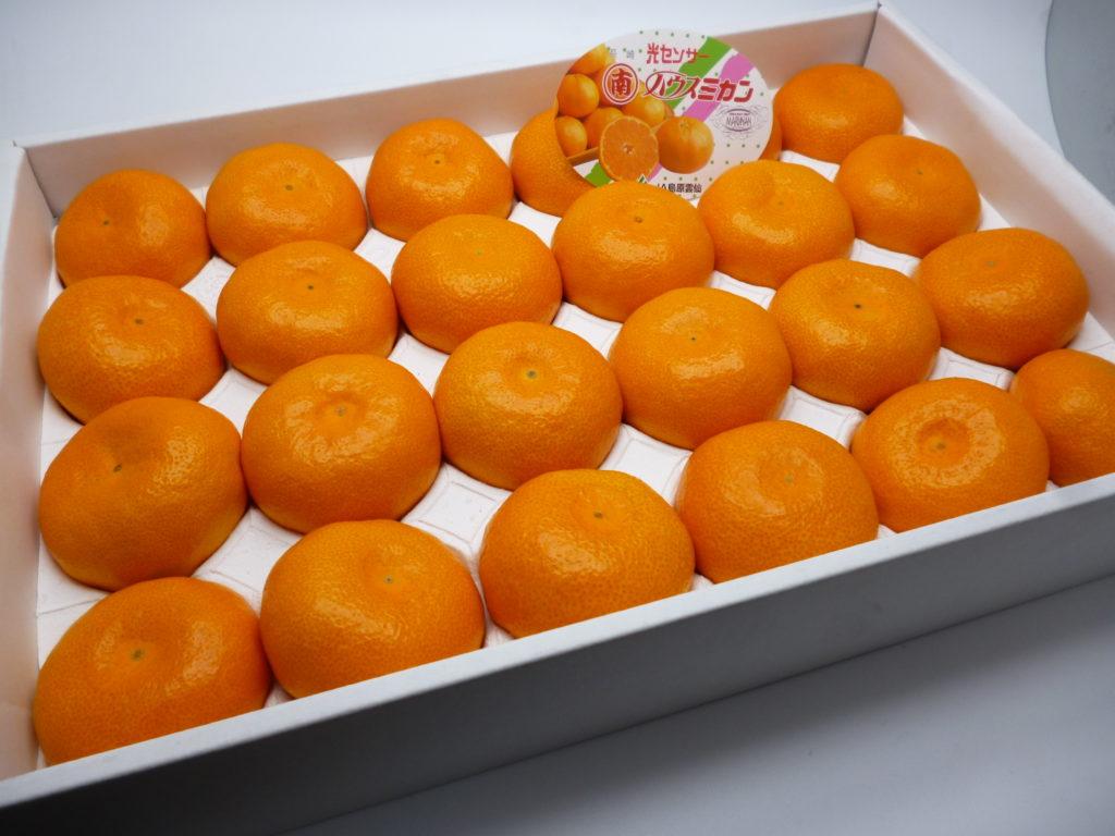 「ハウスみかん」(2.5kg箱)